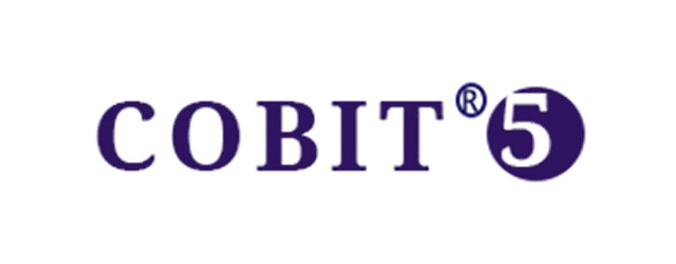 DocVu.AI is PCI DSS level4 and COBIT 5 Level 2 Company